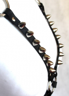 Kožený postroj s hroty, Leather Spike Harness
